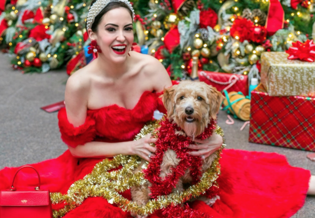 1st Dog of Christmas – @Mr.MonsterPup